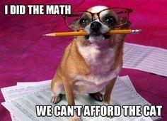 Sometimes money is tight! Funny dog pic with hilarious joke caption. For the best funny dog joke pics visit http://thelendingmag.com/money-meme/