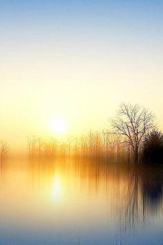 Sunrise over a lake Landscape Photography, Nature Photography, Amazing Nature, Belle Photo, Pretty Pictures, Beautiful Landscapes, Beautiful World, Mother Nature, Mists