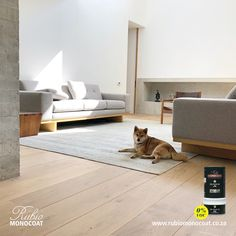 Timber flooring and furniture coated with RMC Oil Plus 2C.  Rubio® Monocoat Oil Plus 2C is a next-generation product that colours and protects your wood in 1 single layer.   •   Single layer application •   40 standard interior colours available •   Enhances the natural look and feel of the wood •   Easy to maintain and repair •   No overlaps or starting marks •   Average spread rate of 50 m² / litre •   Durable protection •   Suitable for almost all wood types •   0% VOC