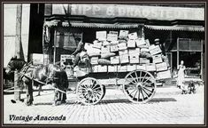 Horse drawn wagon loaded down in front of the Tripp & Dragstedt store, Anaconda, Montana. Librarian's note: According to book 'Anaconda, Montana: Copper Smelting Boom Town on the Western Frontier' by Morris, Tripp & Dragstedt opened their Anaconda store in 1896 and closed it in 1899 to move the operation to Butte