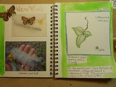 Nature Journal with a photo and envelope. @HBNatureStudy