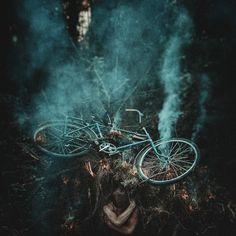 into the wild by Georgiy Alexandrov on 500px