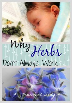 Several reasons why Herbs Don's Always Work