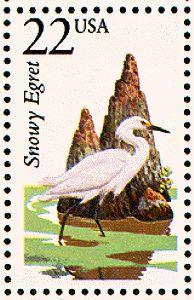 Snowy egret  1987-06-13