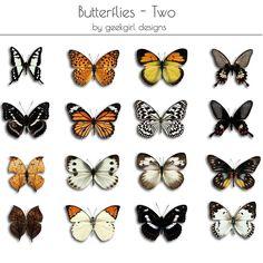 Butterflies Set One by geekgirl designs
