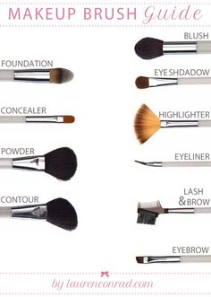 Beauty School: Brush Guide. Find all these brushes here: http://sheercosmetics.net/flawless-looks-makeup-brush-set/