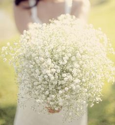 baby's breath for bridesmaids