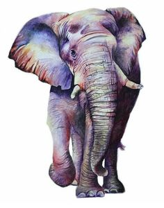 elephant Source by African Art Paintings, Animal Paintings, Animal Drawings, Cute Drawings, Elephant Artwork, Elephant Love, Elephant Print, Watercolor Animals, Watercolor Art