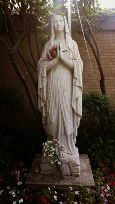 Our Lady of Lourdes.  The Immaculate Conception.  Rays of heaven shining down on her.