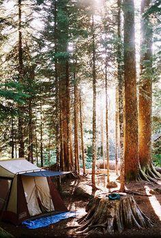 I heart primitive camping.