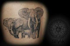 #tattooart #family #elephant #blackandgray #sirak #realist