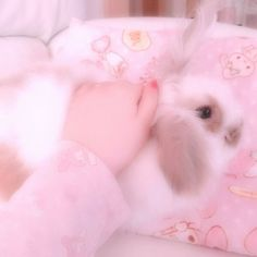 Baby Animals, Cute Animals, Pink Animals, Cute Baby Bunnies, Baby Pink Aesthetic, Pink Themes, Cute Pink, Cute Icons, Aesthetic Pictures