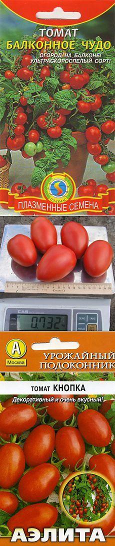 Выращивание томатов в мешках в открытом грунте 24