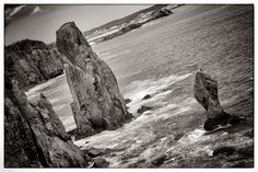 Sea Stacks.    Skerwink Trail, Robin Hood Bay, Trinity Bay, Newfoundland.