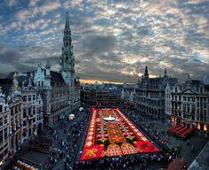 #Flower carpet -Brussels / Belgium