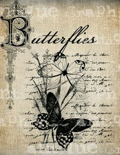 Butterflies printable