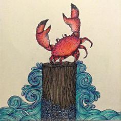 Crab illustration - Sara Riley