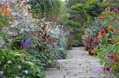 gravetye mixed borders-gardenista