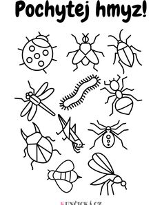 5 jarních aktivit s hmyzem - Kuncicka.cz Elementary Art, Preschool Activities, Painted Rocks, Art For Kids, Coloring Pages, Art Projects, Arts And Crafts, Doodles, Clip Art