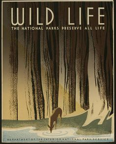 This is a WPA Federal Art Project poster for the National Park Service showing a deer drinking from a forest stream. The National Parks Preserve All Life vintage poster Poster Vintage, Vintage Travel Posters, Vintage Prints, Vintage Style, Wpa Posters, Poster Prints, Retro Posters, Poster Ads, Art Prints
