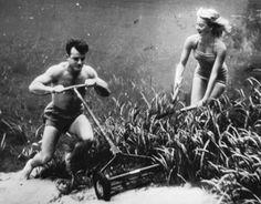 Bruce Mozert 1950's underwater photography merman mowing his lawn?