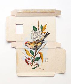 Sara Landeta. Birds held captive inside medicine boxes.
