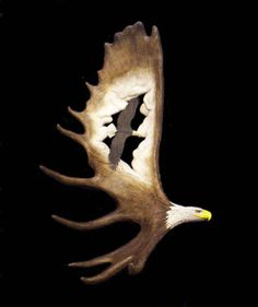 """One of my dad's annual or bi-annual """"Flying Eagles"""" carvings, carved entirely from moose antler"""