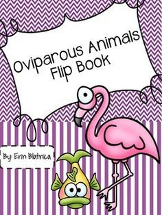 Oviparous Animals Clip Art & Worksheets | Teachers Pay Teachers