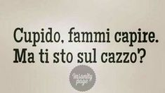Amore Italian Memes, Italian Quotes, Crazy Funny Memes, Wtf Funny, Great Quotes, Me Quotes, Funny Times, Mood Pics, Science Humor