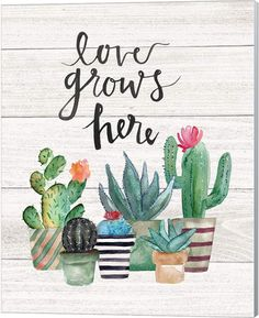 Another great find on 'Love Grows Here' Cactus Succulents Watercolor Wall Sign Cactus Painting, Cactus Art, Cactus Plants, Cactus Decor, Cactus Quotes, Cactus E Suculentas, Happy Birthday Signs, Watercolor Walls, Canvas Artwork