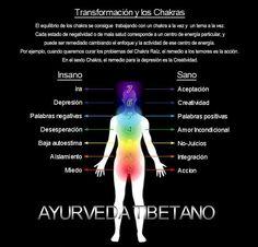 El equilibrio de los Chakras (en español)                                                                                                                                                                                 Más
