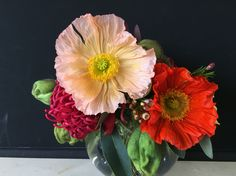 Giant poppies, wax flower and waratahs fish bowl vase atrangement by Bettie bee blooms