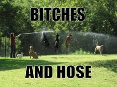 This made me lol a little too much!  Bitches And Hose Meme   Slapcaption.com