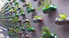 Vous voulez recycler vos bouteilles en plastique ? Mais vous ne savez pas quoi en faire ? Des p'tits malins ont des idées de génie pour alléger leurs poubelles. Alors, pourquoi pas vous ? Découv