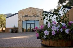 For the love of wine at Allesverloren - Wedding Essentials & Essential Groom Budget Wedding, Wedding Venues, Mountain View, Wines, Groom, Mansions, Luxury, House Styles, Beautiful