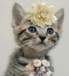 soo cute!! <3