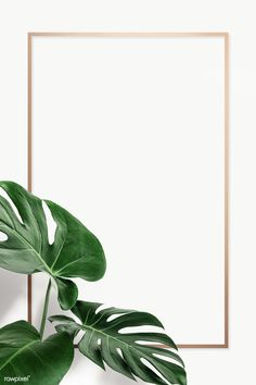 Leaves Wallpaper Iphone, Gold Wallpaper Background, Pop Art Wallpaper, Poster Background Design, Powerpoint Background Design, Phone Wallpaper Images, Plant Wallpaper, Framed Wallpaper, Iphone Wallpaper Tumblr Aesthetic