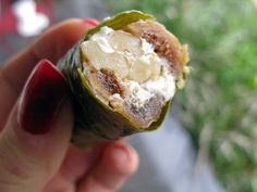 Oh my...goat cheese, fig & walnut stuffed grape leaves  At least I know @Kimberly  Cook will eat these with me!