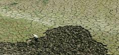 #LasCosasQueDebenCambiar creer que aun no somos responsables del problema. Via #IPCC