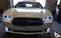 2011-2014 Dodge Charger ORACLE Halo Kit Custom Muscle Cars, Custom Cars, 2014 Dodge Charger, Dodge Srt, Dodge Chrysler, Classy Cars, Car Headlights, Fancy Cars, My Ride