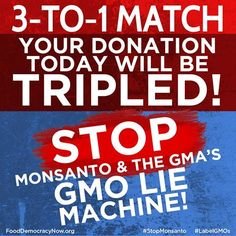 Monsanto and the GMA are running a dirty money campaign to kill GMO labeling -Help us fight back! Take action here: https://www.facebook.com/FoodDemocracyNow