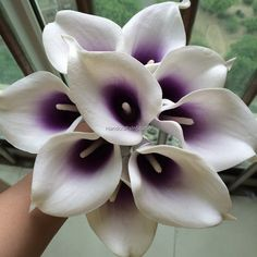 Real Touch Purple And White Calla Lilies by HandcraftsInStudio