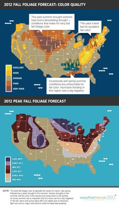2012 Fall Foliage Forecast: Color Quality
