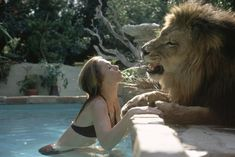 Incredible images of Melanie Griffith, Tippi Hedren with their pet lion  - DigitalSpy.com