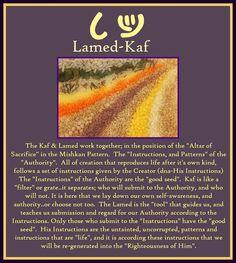 Kaf - 11th letter - number 20 - bent hand Lamed - 12th letter - number 30 - goad