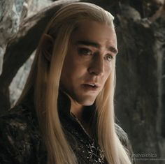 I enjoyed Lee Pace as Thranduil, but I don't like the way Thranduil was written in the movie. Also the bit about not allowing Legolas to 'pledge himself to a lowly Silvan Elf' really bugged me because in the Lord of the Rings books Legolas identified himself AS A SILVAN ELF, because Thranduil and Oropher ARE SILVAN ELVES.