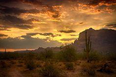 """""""A Glorious Southwest Morning""""  #sunrise #Arizona #thesupes #nature #landscape #desert #southwest #cactus #saguaro"""