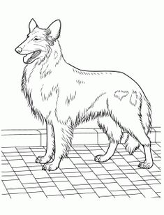 Best Dog Coloring Pages