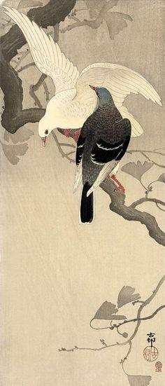 """小原古邨 Ohara Koson """"Pigeons on Ginkgo Branch"""" Japanese Painting, Chinese Painting, Ohara Koson, Art Chinois, Art Asiatique, Art Japonais, Bird Illustration, Japanese Prints, Japan Art"""
