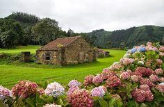 Açores-  Portugal                                                                                                                                                                                 Mais